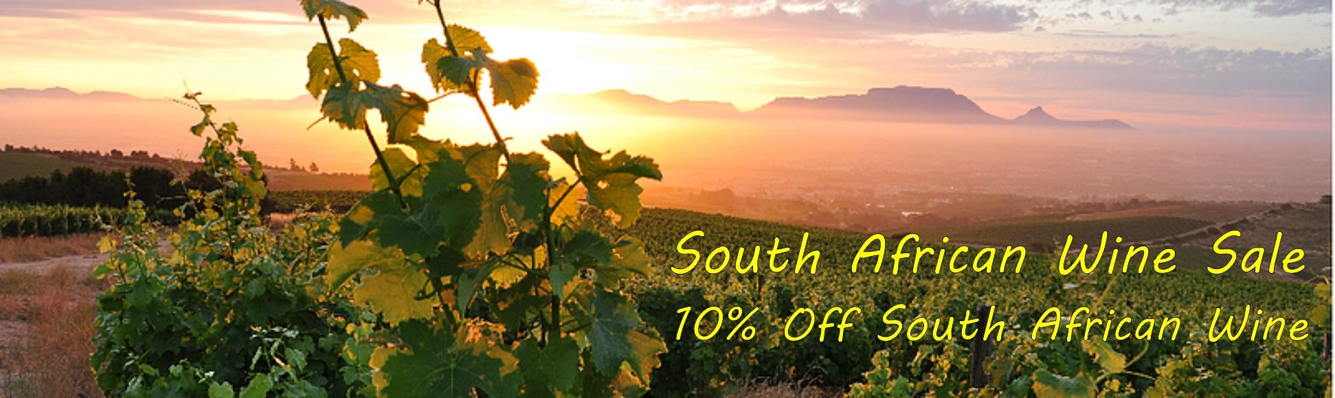 South African Wines - 10% Off!