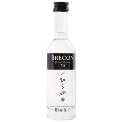 Penderyn Brecon Gin (5cl) Miniature